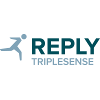 DDD - Triplesense Reply